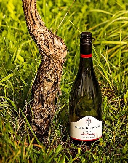 Chardonnay 2013