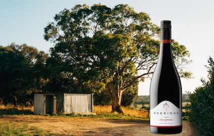 Little_shed_Sangiovese_Tyrone_hero_432x275