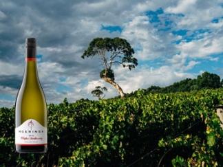 Elliptic Chardonnay 2016