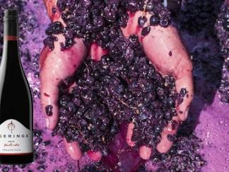 Ngeringa Pinot Noir 2016