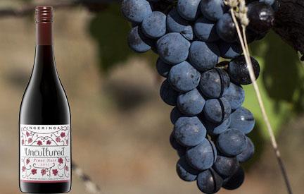 UNCULTURED Pinot Noir 2017