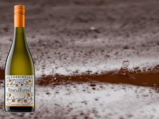 Uncultured Chardonnay 2018 – sold out