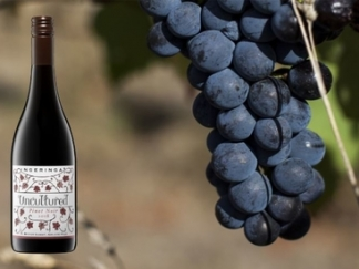 Uncultured Pinot Noir 2018 – new release
