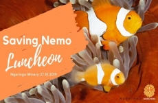Saving Nemo Fundraiser Luncheon – Sunday 27th October