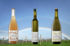 New Releases –  Uncultured Pet Nat, Olive Oil and Cider 2019